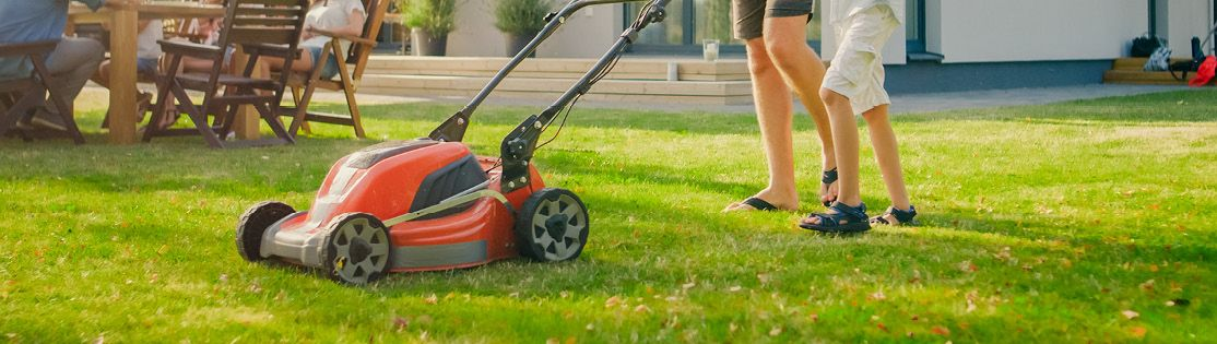 Mow your lawn in advance